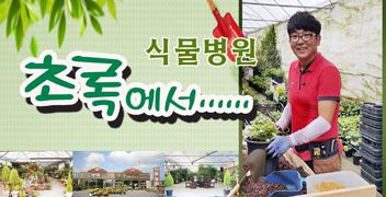 식물병원 초록에서